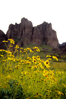694-D Superstition Mountain 010 -Superstition Mountains, Apache Junction, Arizona